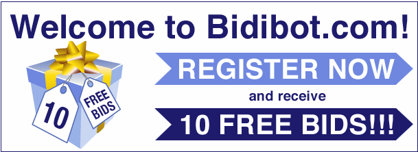 BidiBot Review